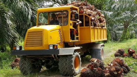 农用四驱折腰运输型拖拉机