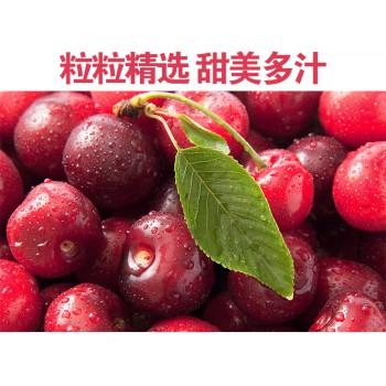 烟台大樱桃红灯美早脆甜鲜嫩多汁爆浆的孕妇水果儿童水果