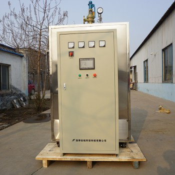 洗衣房熨烫用电加热蒸汽锅炉